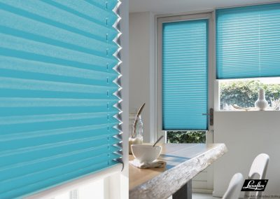 Pleated blinds / canvas